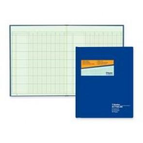 "Blueline Columnar Book, ""8 Column"", 12-1/4"" x 9-7/8"""