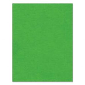 "Hilroy Heavyweight Recycled Bristol Board, 22"" x 28"", dark Green"