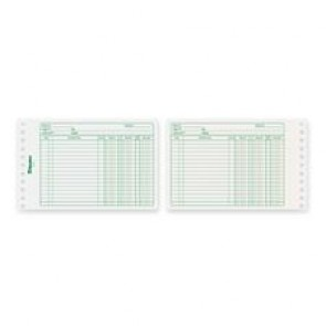 Blueline Bilingual Ledger Sheet