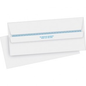 Business Source Regular Security Invoice Envelopes