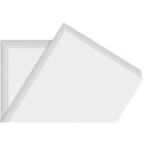 NAPP Newsprint Paper